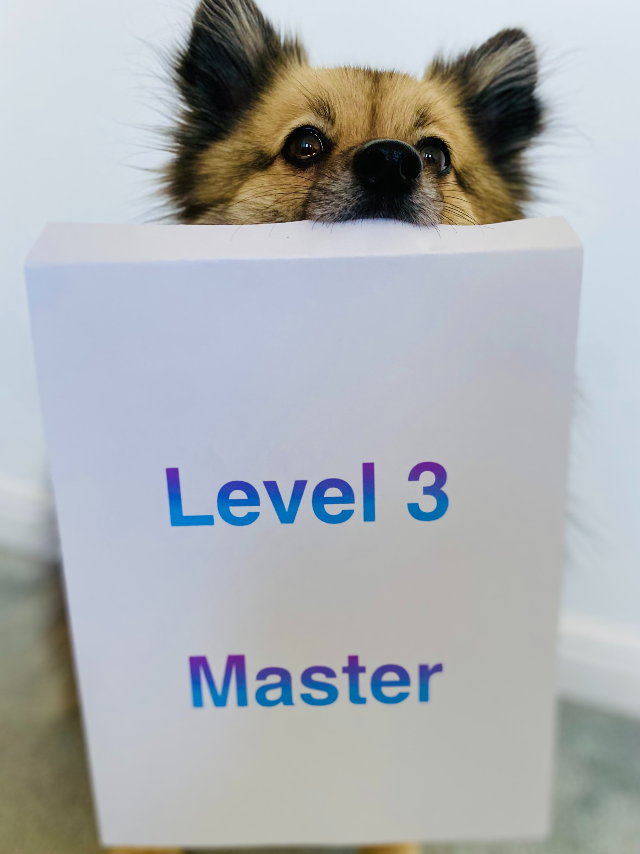 Level 3 Master @ Horndean