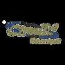 logo-chedid.png