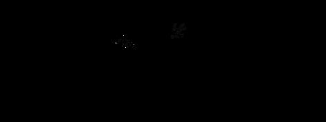 Charcute-Logo-Concept3.png