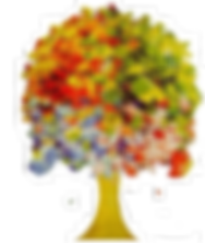 quercia cpn foglie colorate