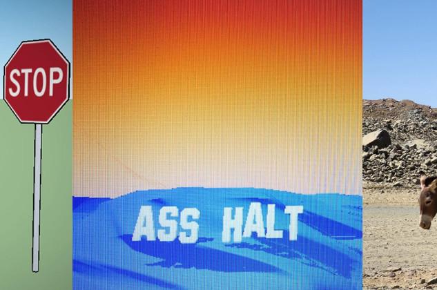 Ass halt