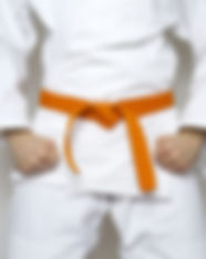 standing fighter orange belt centered ma