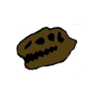 SOLO HEAD.png
