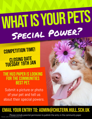 Pets comp (1).jpg