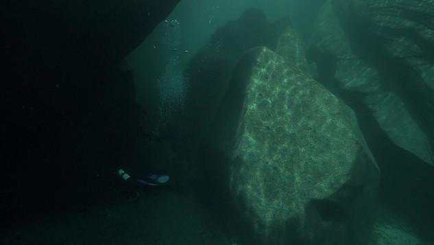 Swim in the green water