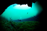 Cenotes with diver