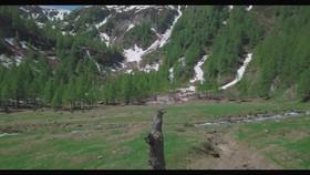 Camp la Torba-Switzerland.mov