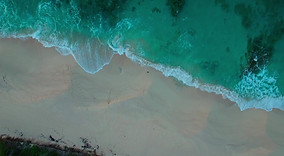 Man vs Nature-Bahamas.MOV