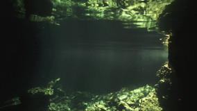 Free diver-Bahamas.mov