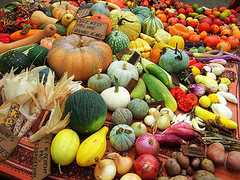naturopathie, alimentation vivante, santé au naturel, légumes anciens, bien-être, vitalité, ardèche, guilherand-granges  valence drôme valérie velter