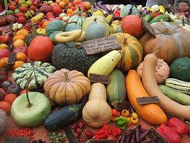 naturopathie, alimentation vivante, santé au naturel, légumes anciens, bien-être, vitalité, ardèche drome valence guilherand-granges valérie velter