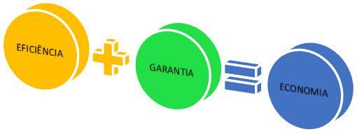 eficiencia garantia economia