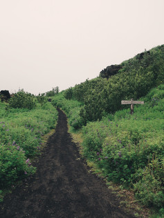 Island-09.jpg