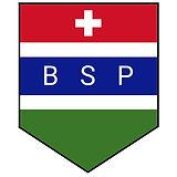 BSP LOGO FINAL Mardoto reg v2.jpg