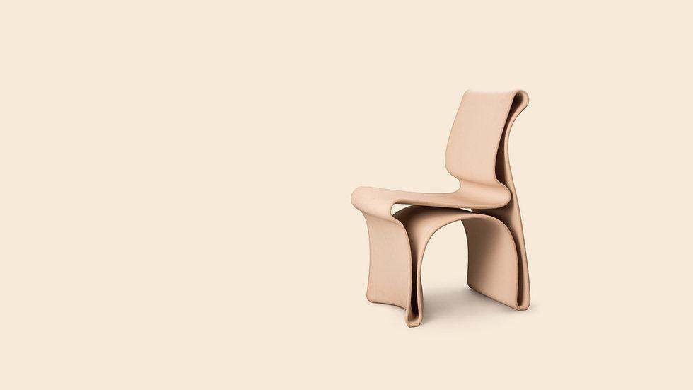 Antropo_chair_wo_mierzwa_2020_AA.jpg