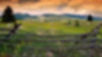 Screen Shot 2020-06-01 at 11.32.20 AM.pn