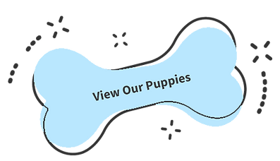 viwpuppiesbutton.png