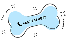 phonebutton.png