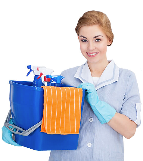 cleaning-lady.png