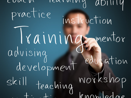 MR. CEO, STOP TRAINING, START LEARNING
