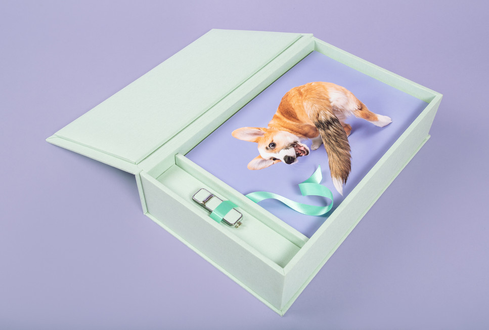 Memory Box #3.jpg