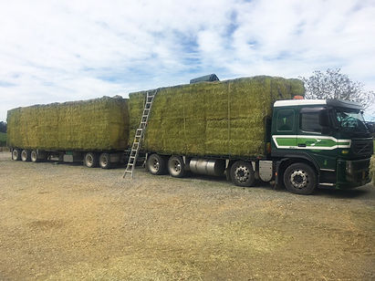 Hay & Straw delivered to your farm