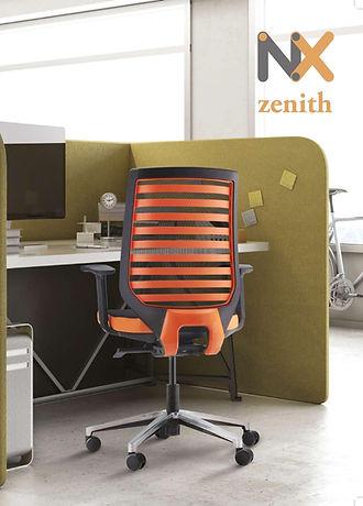 ZENITH-page-001-1_edited.jpg