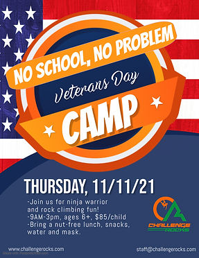 Veterans Day Camp Flyer - Made with PosterMyWall.jpg
