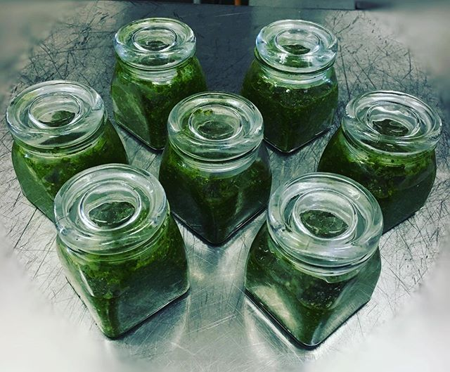 Cannabis Cilantro and Feta Pesto