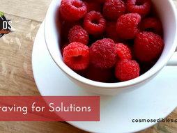 A Craving for Solutions