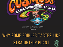 Why Some Edibles Taste Like Straight-Up Plant