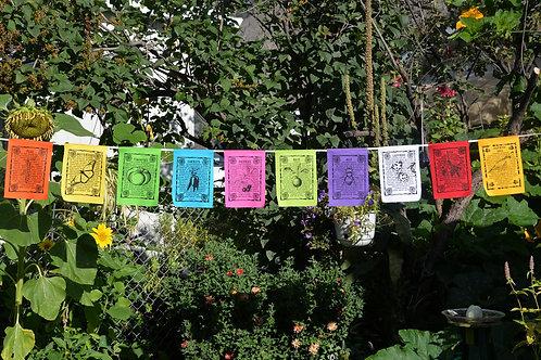Mixed Gardens – 10 Flags