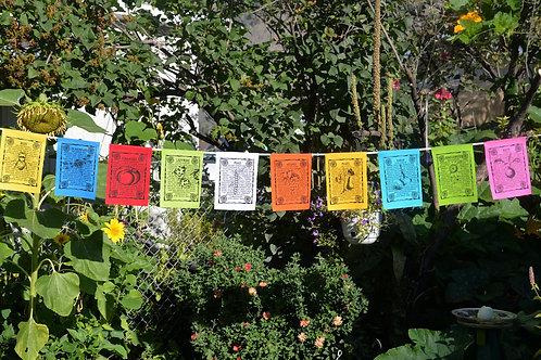 Gardens – 10 Flags