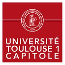 logo toulouse.png