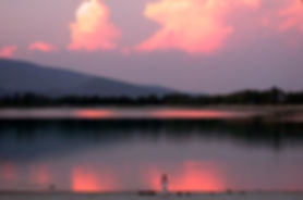Girl feeding ducks evening at lake
