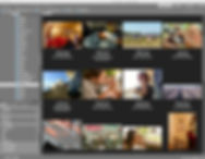 Twelve thumbnails on comuter screen Adobe Bridge page.