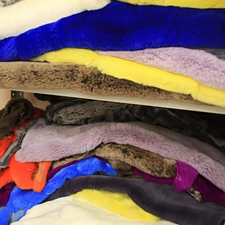 Разнообразие цвета и оттенков меха кролика Рекс