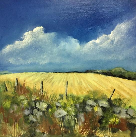 Summer Fields - SOLD