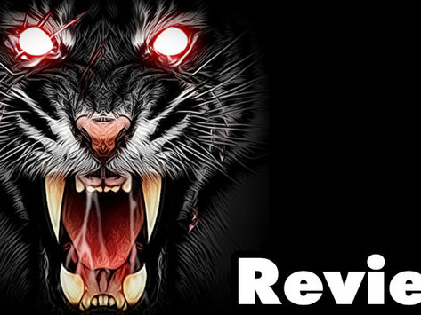 Life of Black Tiger Review – The Worst PS4 Game In The World
