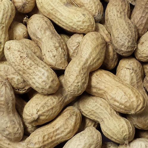 Raw Peanuts in Shell - 25 lb. bag