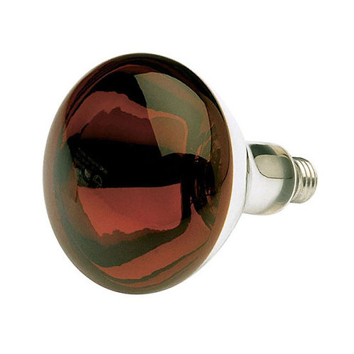 Satco Heat Lamp R40 Infrared 250 W Red Bulb