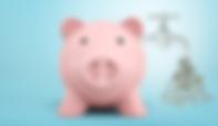 piggy bank_edited.png