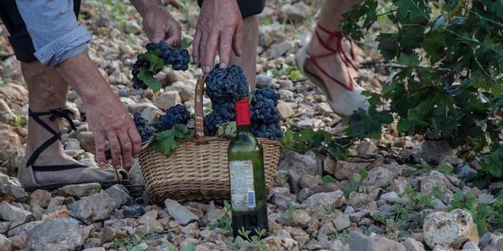 Tour to Fontanars - The Valencia Tuscany