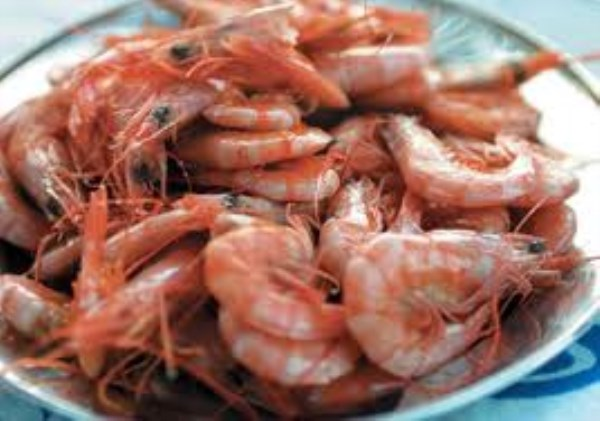 King prawns in brine