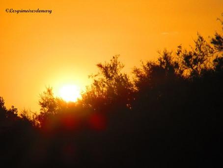 Des couchers de soleil, en voici, en voilà !