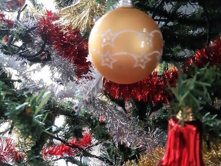 Un Noël particulier