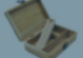Xeno_HomeCategories -2020-16.png