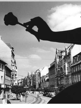Bundesarchiv_Bild_183-1987-1001-013,_Erf