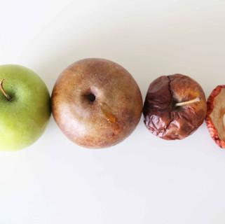 Fruit 1.2