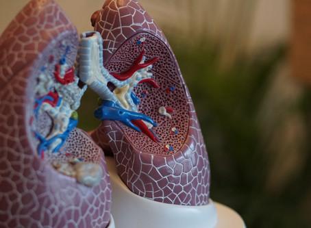 治療「菜瓜布肺」高自費 實支實付醫療險補缺口